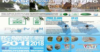 VI° ASCOLI FLY MEETING